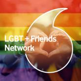 Vodafone LGBT+ Friends network logo