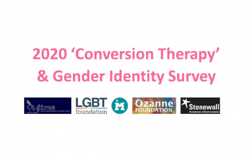2020 conversion therapy and gender identity survey cover