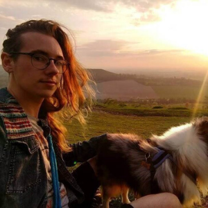 Person with dog on hill with a sunset in the sky